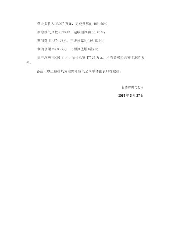 2019年财务预算信息_02.png